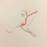 بهترین روش یادگیری خوشنویسی با خودکار